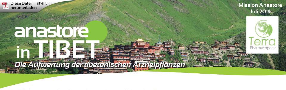 Anastore in Tibet - Die Aufwertung der tibetanischen Arzneipflanzen