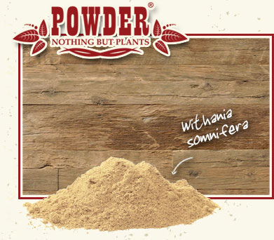 POWDER - ASHWAGANDHA BIO